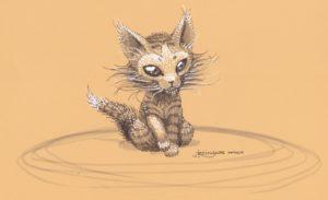 Un étrange chaton exotique aux yeux sombres