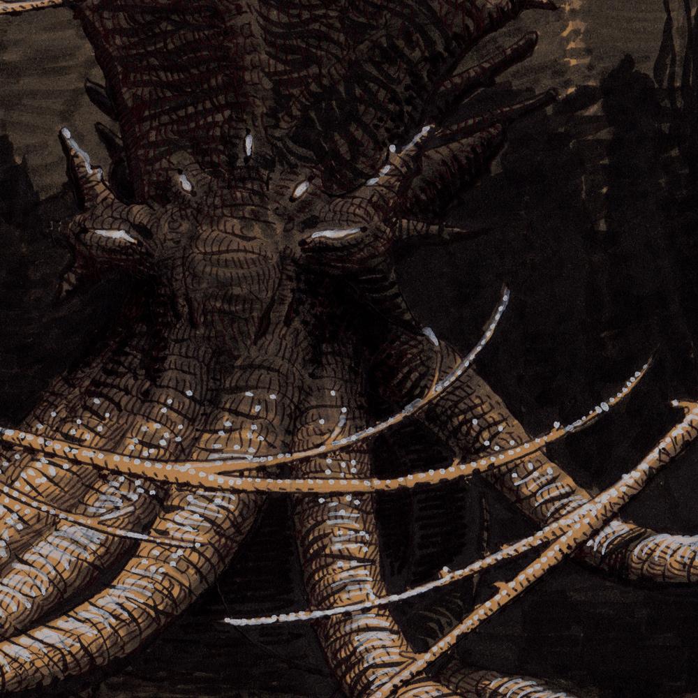 Pieuvre-Kraken - détail